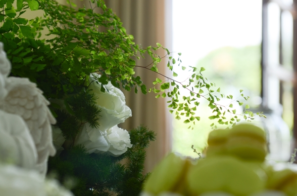 Nina 171 Decoração: verde e branco