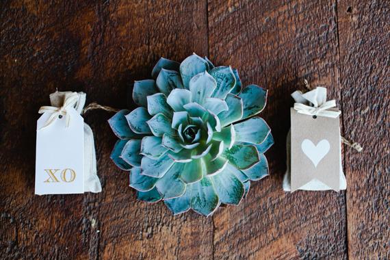 surprise california wedding 14 Suculentas na decoração