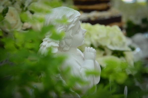 Nina 144 Decoração: verde e branco