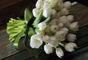 bouquet de tulipas 300x205 bouquet de tulipas
