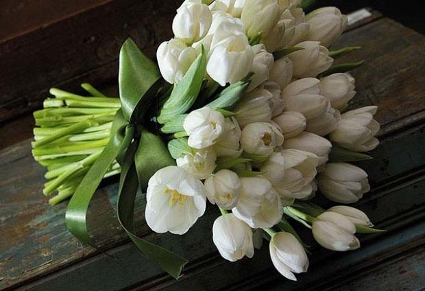 bouquet de tulipas Bouquet de tulipas