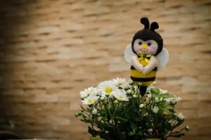 cha abelhinhas 22 300x199