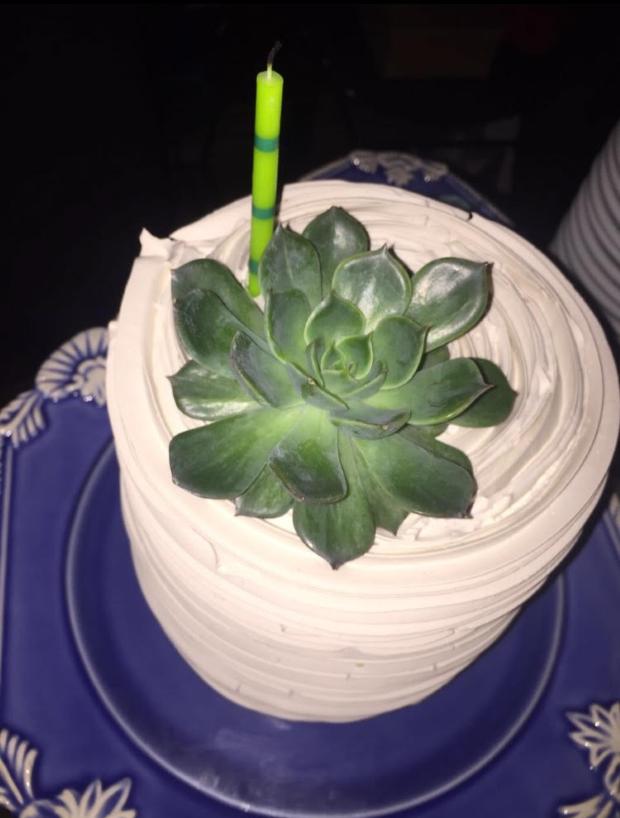 bolo com suculentas 3 Bolo + suculentas
