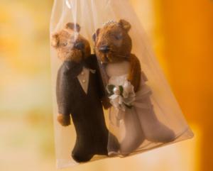 casamento civil fernanda sorgatto 17 300x241 CASAMENTO CIVIL FERNANDA SORGATTO 17